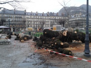 place Victor Hugo : l'hécatombe
